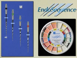 Endodontic Procedural Concepts