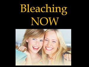Bleaching Teeth: Current Status - Part 1